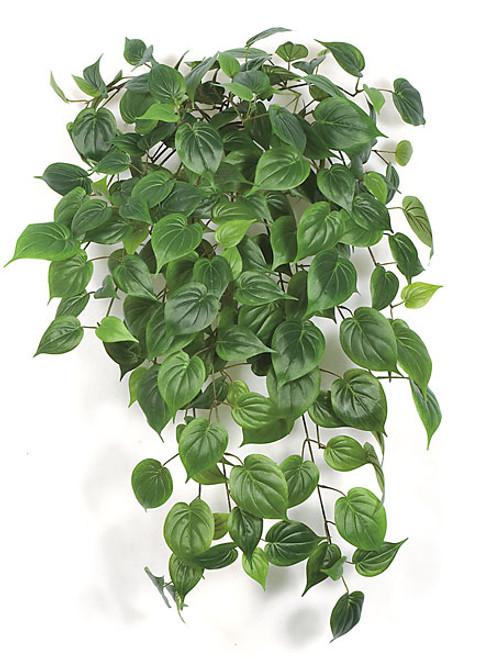 "PR-8704035"" Philo Leaf BushGreen"