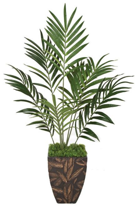 PR-86000 - Fire Retardant6.5' Kentia Palm TreeDecorative Pot Sold Separately