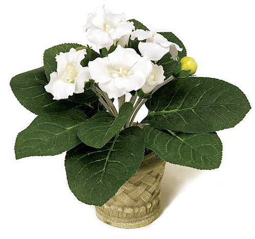P-4341