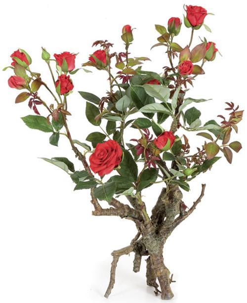 "P-7235018"" Standing Mini Rose PlantRed"