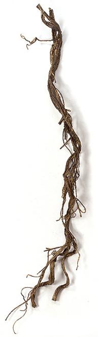 5.5 Inch Plastic Twig Vine