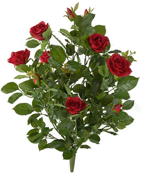 "P-17004028"" Red Rose Bush"