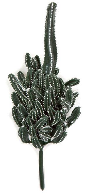 8 Inch Finger Cactus