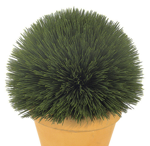 8 Inch Wheat Grass Ball