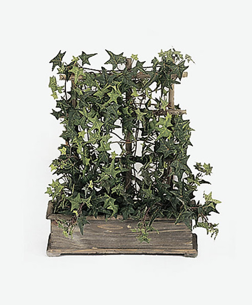 18 Inch Pittsburgh Ivy Window