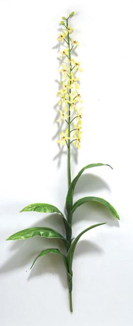 "P-323041"" OrchidGreen"