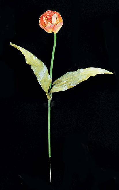 """20"""" Tulip StemOrange/Yellow"""