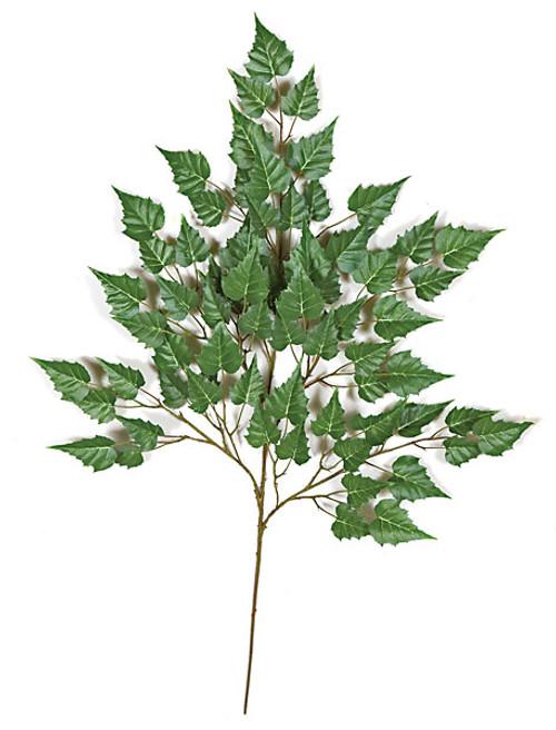 """35"""" Birch Branch"""