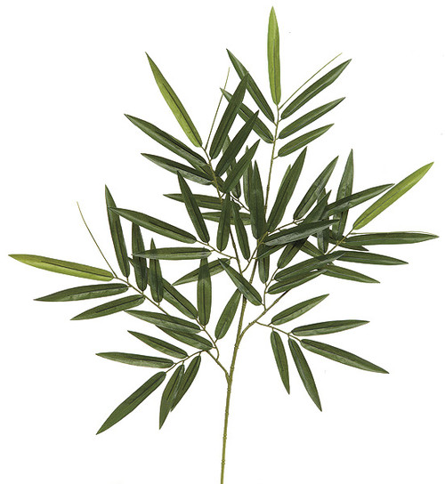 "P-6256030"" Bamboo Branch"