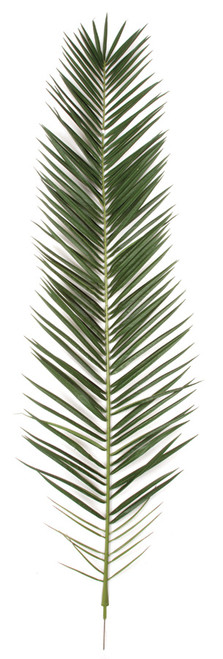 87.5 Inch IFR Phoenix Palm Frond - Dark Green (Sold Per Piece)