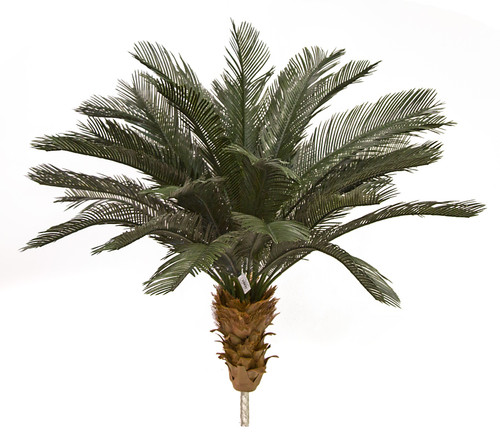 3.5 Feet, 5.5  Feet, and 6.5 Feet Tall x 48 Inch Width - Polyblend Cycas Palm Trees