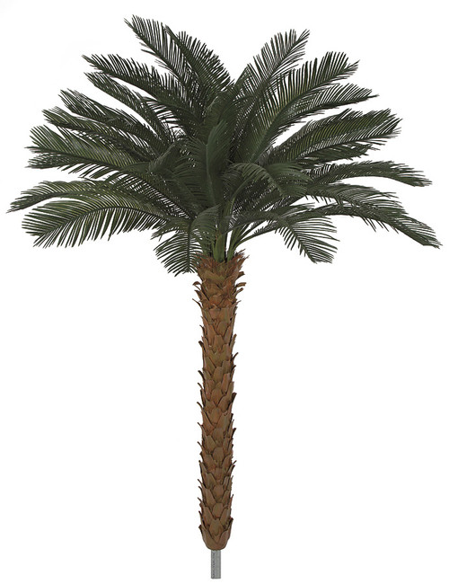 4.5 to 8.5 Feet Tall x 68 Inch Width - Polyblend Cycas Palm Trees using A-1180 Branch