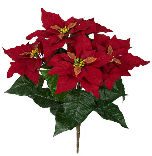 20 Inch IFR Poinsettia Bush