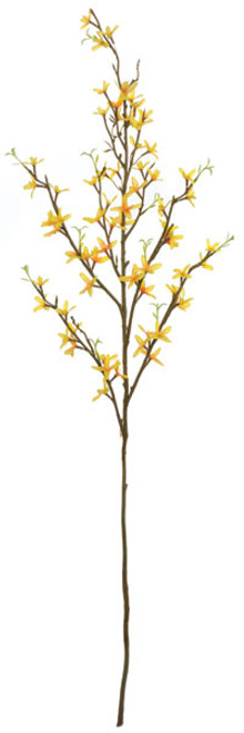 36 Inch Forsythia Branch (Sold per Piece)