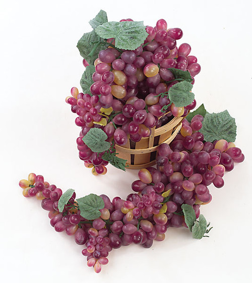 20 Inch Finger Grapes - Wine/Muscat (Sold Per Cluster)