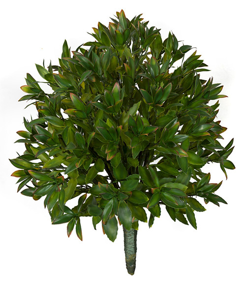 24 Inch IFR Magnolia Leaf Bush Green with Red Tips