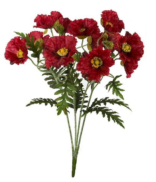 25 Inch Poppy Bush x 12