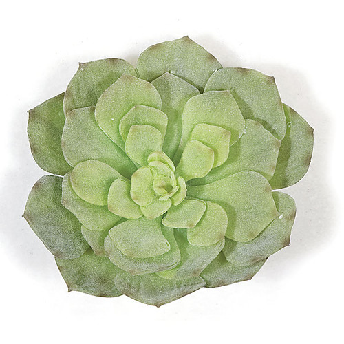 A-111550