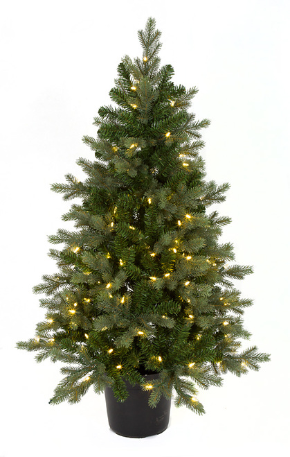 """C-17172448"""" Wilshire Spruce Treewith Pot"""