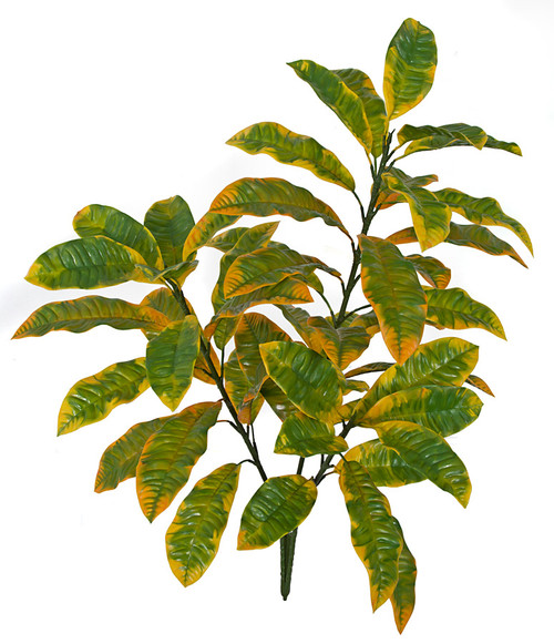 34 Inch Outdoor UV Large Yellow Croton Bush x 3