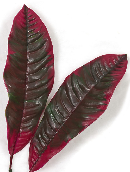 34 Inch Outdoor Mixed Red and Green Croton Bush x 3