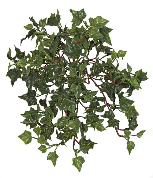 14 Inch Hanging UV English Ivy Bush