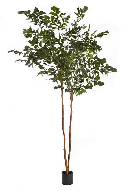 W-170040 7' Fishtail Palm Tree x 2