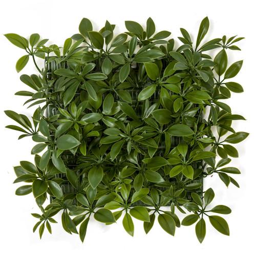 10 Inch UV Green or Red/Burgundy Schefflera Wall Mat