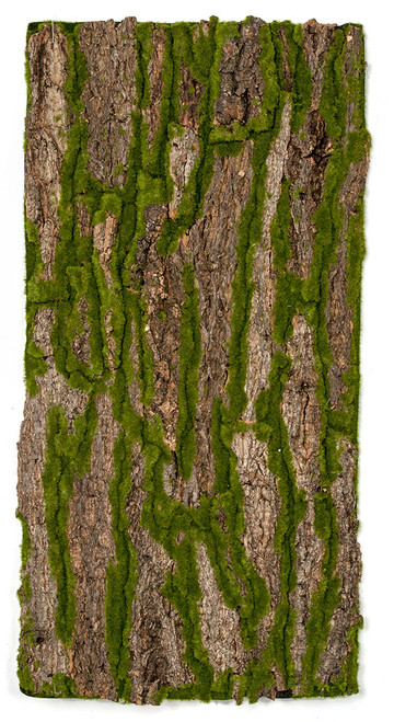 40 Inch x 20 Inch Foam Bark/Moss Sheet