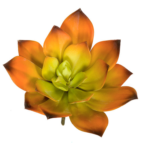 8 Inch Width Artificial Orange and Green Echeveria Pick