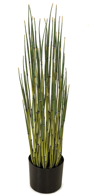 31 Inch Potted Bamboo Stems