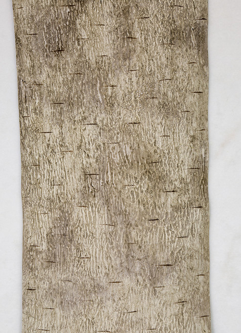 6 Foot x 12 Inch Roll of Synthetic Birch Bark in Dark Grey or White Colors