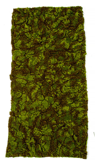 "20"" Wide x 40"" Length Green and Brown Moss Carpet"
