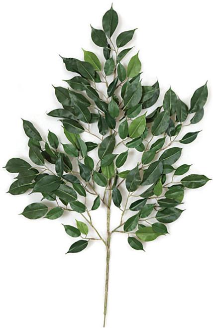 24 Inch Artificial Nitida Ficus Branch (Sold By Dozen)