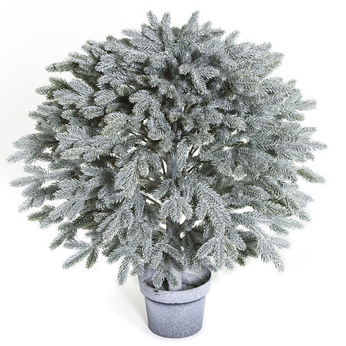 27 Inch Potted Frosted Blue Balsam Ball Topiary