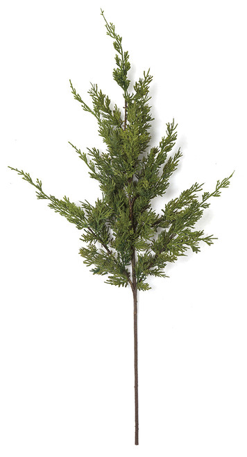 36 Inch Natural Touch Cypress Spray