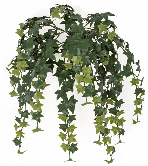 24 Inch Outdoor UV Hanging English Ivy Vine