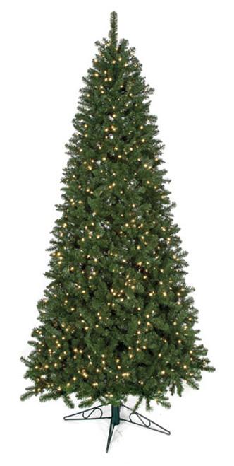 15 Foot Large Fluff-Free Slim Monroe Pine Tree