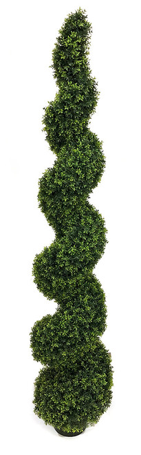 6' UV Dwarf Boxwood Spiral Topiary