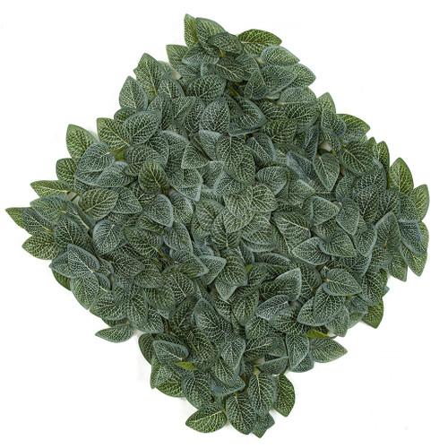 """20"""" x 20"""" Fittonia Leaf Mat"""