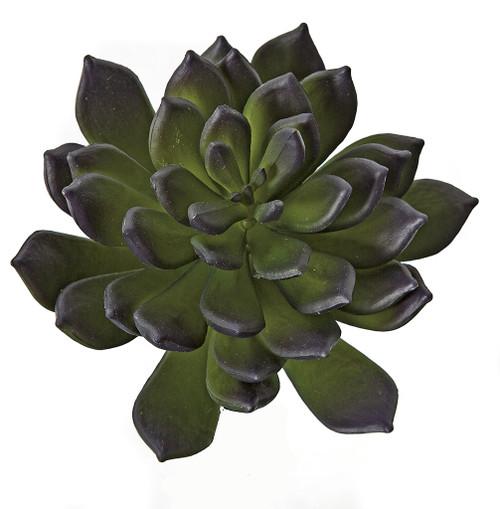 "AR-175110 - Fire Retardant 7"" Pachyphytum Succulent Purple Green"