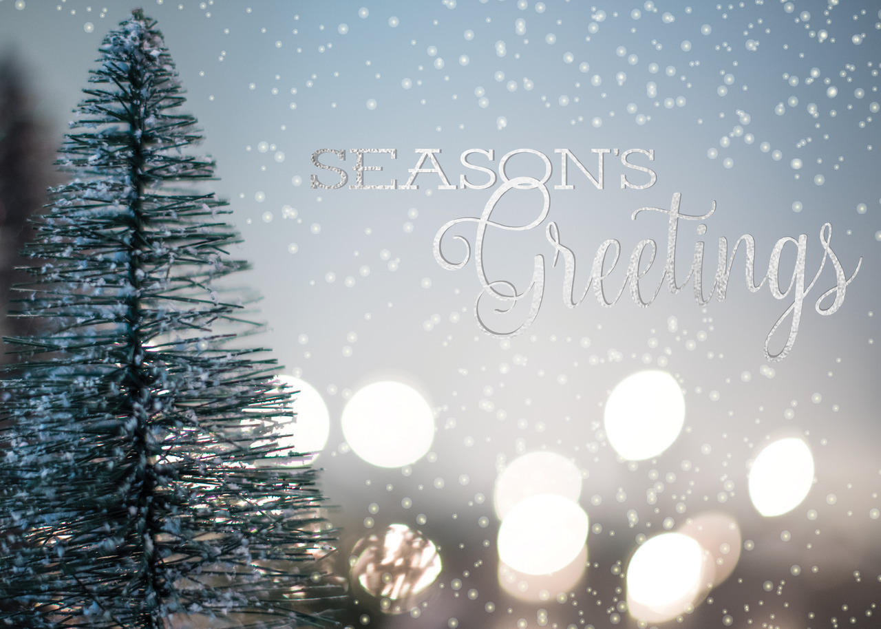 Business foil printed holiday greeting cards ceo cards business holiday greeting card featuring an outdoor winter scene and seasons greetings message in silver foil m4hsunfo