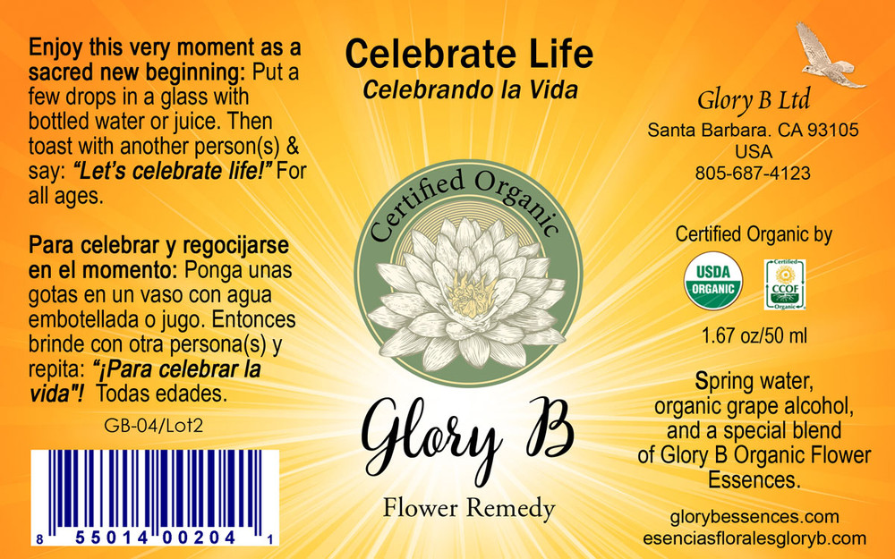 CELEBRATE LIFE acknowledge that the blessings are here