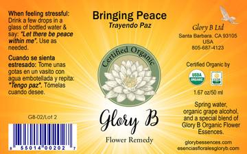 BRINGING PEACE          .....  to gain inner calmness
