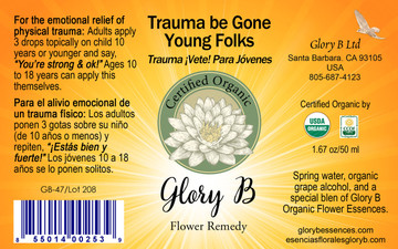 TRAUMA BE GONE FOR YOUNG FOLKS  gives the young one a sense of strength