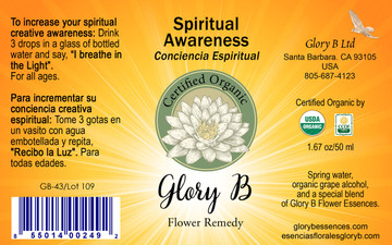 SPIRITUAL AWARENESS use to ignite your recognition of available Inner Light.