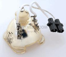 http://buynesp.com.dedi2245.your-server.de/2-18-images/69378 Bulb.png