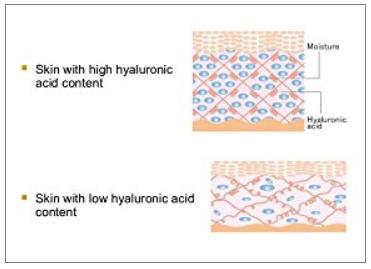 hyaluronic-acid.png
