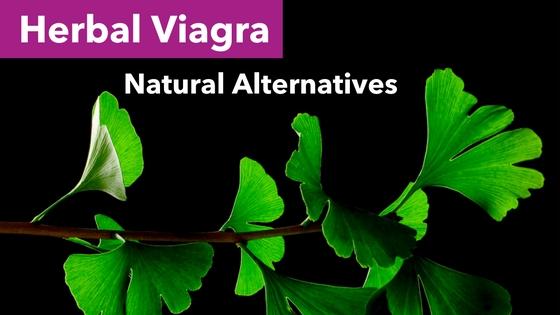 Herbal Viagra - Ginkgo Biloba Leaves Black Background