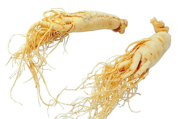 korean red ginseng root system dried
